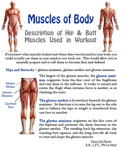 Best Muscles to Workout Together