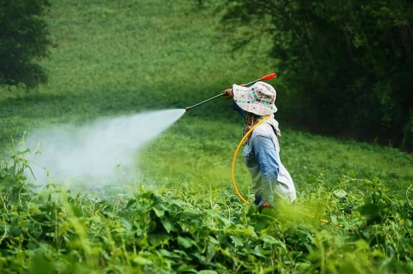 The Truth About Pesticides
